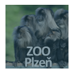 ZOO Plze